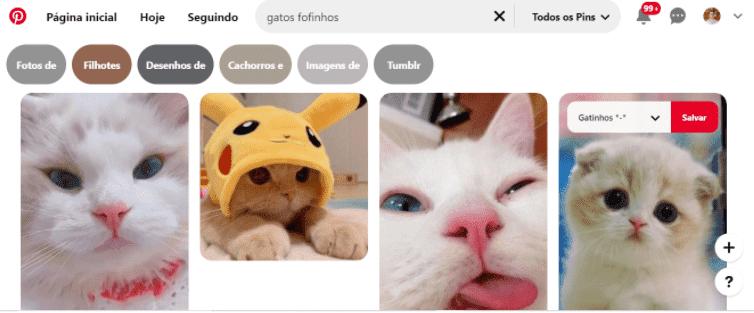 """O que é Pinterest 2: a imagem ilustra o processo de salvar um Pin no Pinterest, há uma série de imagens de gatinhos, uma está selecionada e no cantinho superior direito dela está escrito """"salvar""""."""